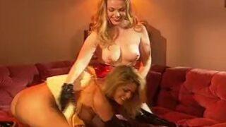 Zwei geile Lesben lecken sich die Muschi